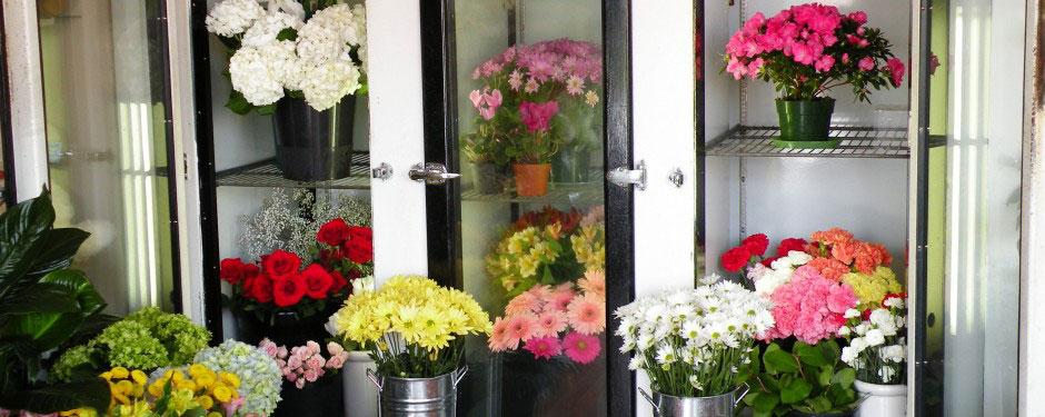 Flower Cooler